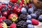 ترکیب موجود در میوهها از بیماری پارکینسون پیشگیری میکند