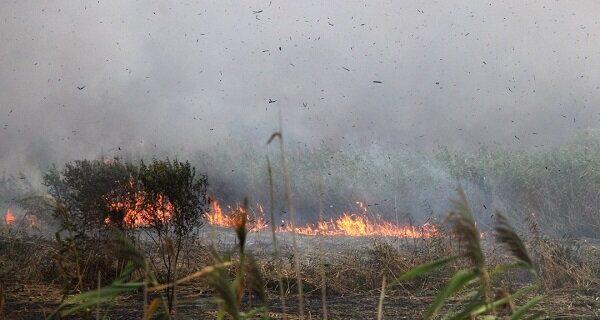وقوع آتشسوزی در منطقه گردشگری «بنو» پارسیان