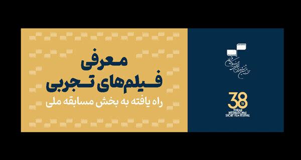 معرفی آثار تجربی بخش مسابقه ملی جشنواره فیلم کوتاه تهران