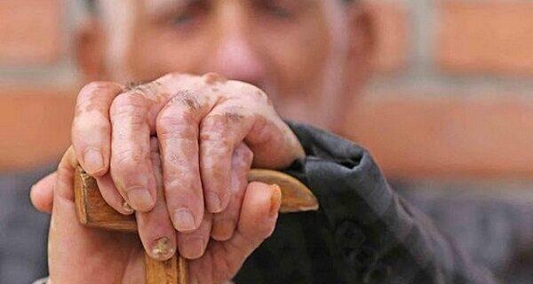 تغذیه سالمندان باید چگونه باشد/کاهش انرژی در افراد مسن